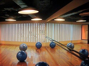Healthcare Professionals Starting Private Practices - image - fitness room with exercise balls