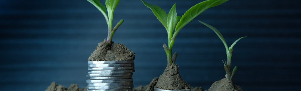 Sustainable business practices for SMEs image - stacked 50 pence pieces with plant on top